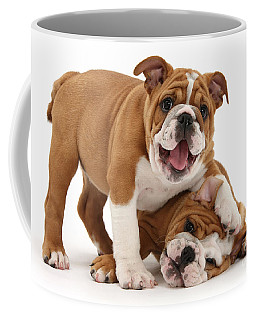 Sorry, Didn't See You There Coffee Mug