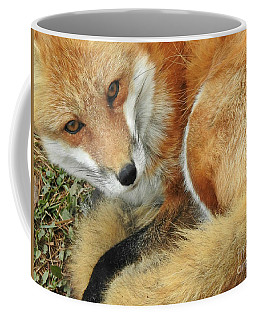 Soulful Eyes Coffee Mug