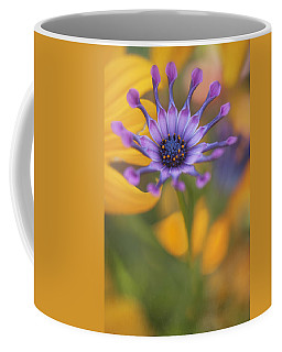 South African Daisy Coffee Mug