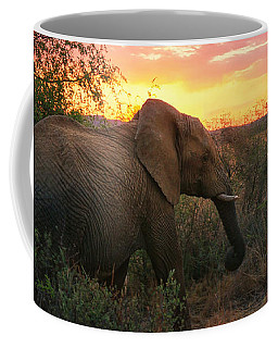 Coffee Mug featuring the photograph South African Elephant At Sunset - Black Rhino Reserve by Menega Sabidussi