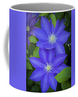 South Carolina Color Coffee Mug