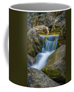 Coffee Mug featuring the photograph South Mtn State Park-1 by Joye Ardyn Durham