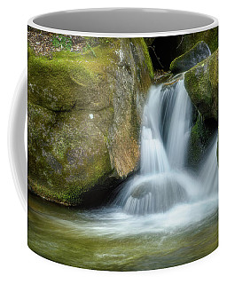 Coffee Mug featuring the photograph South Mtn State Park 2 by Joye Ardyn Durham