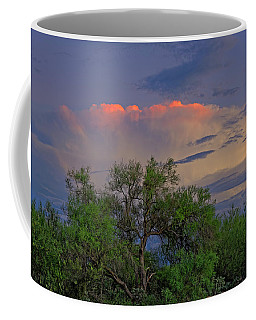 Coffee Mug featuring the photograph Southeast Of Sunset H38 by Mark Myhaver