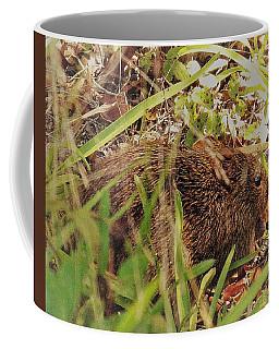 Southern Bog Lemming Coffee Mug