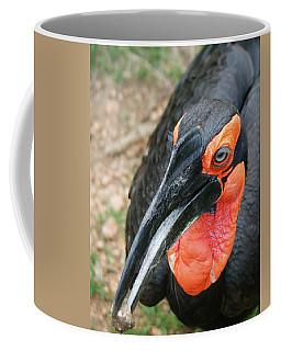 Southern Ground Hornbill Coffee Mug