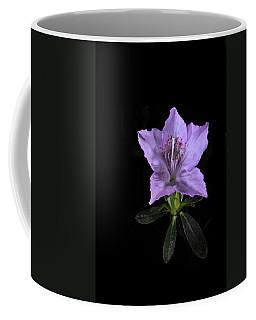 Southern Indica Azalea 2 Coffee Mug
