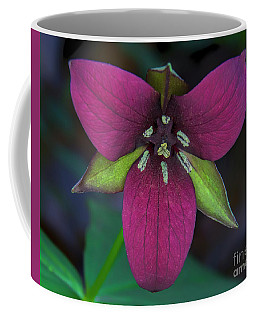 Southern Red Trillium Coffee Mug by Barbara Bowen