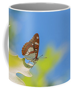 Southern White Admiral - Limenitis Reducta Coffee Mug