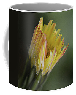 Sow Thistle Opening Coffee Mug