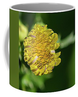 Sow Thistle Coffee Mug