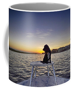 Spaniel At Sunset Coffee Mug