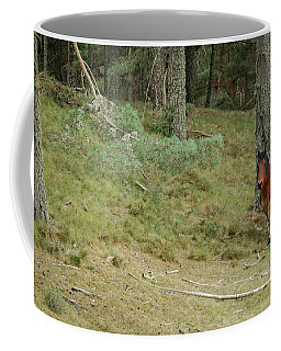 Spanish Horse Gredos Coffee Mug