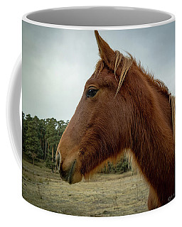 Spanish Horse Coffee Mug