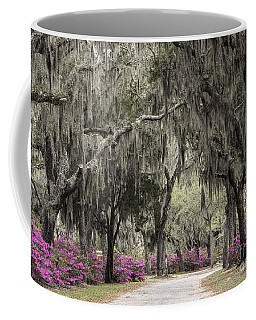 Coffee Mug featuring the photograph Spanish Moss And Azalea Bushes by Jeannette Hunt