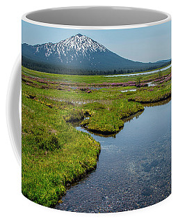 Sparks Spring Bloom  Coffee Mug
