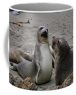 Sparring Seals  Coffee Mug