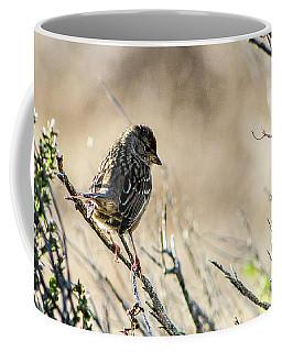 Snarky Sparrow Coffee Mug