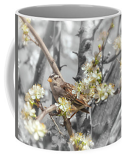 Sparrow On The Branch Coffee Mug