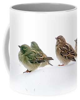 Sparrows In The Snow Coffee Mug