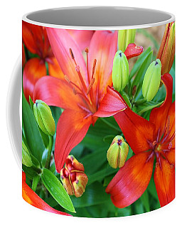 Coffee Mug featuring the photograph Spectacular Day Lilies by Bruce Bley