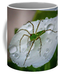 Spider And Flower Petal Coffee Mug