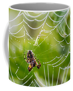 Spider And Spider Web With Dew Drops 05 Coffee Mug