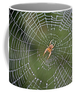 Spider In A Dew Covered Web Coffee Mug