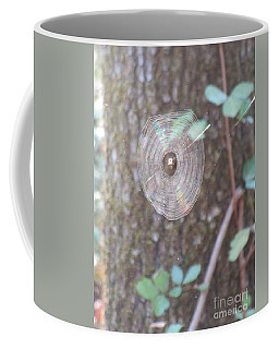 Coffee Mug featuring the photograph Spider In The Round by Marie Neder