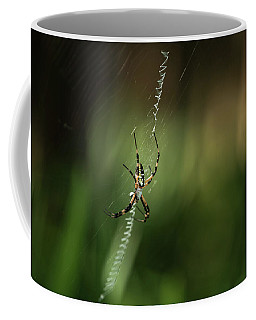 Spider In The Woods Coffee Mug
