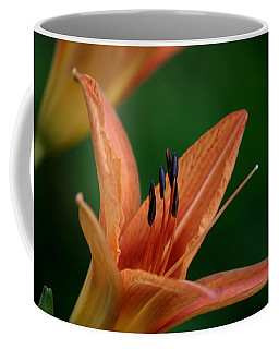 Coffee Mug featuring the photograph Spider Lily 2 by Cathy Harper