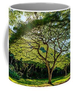 Spider Tree Coffee Mug