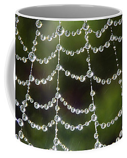 Spider Web Decorated By Morning Fog Coffee Mug