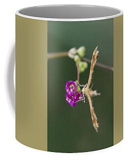Spiderling Plume Moth On Wineflower Coffee Mug