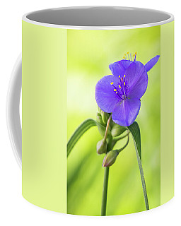 Spiderwort Wildflower Coffee Mug
