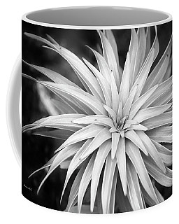 Coffee Mug featuring the photograph Spiral Black And White by Christina Rollo