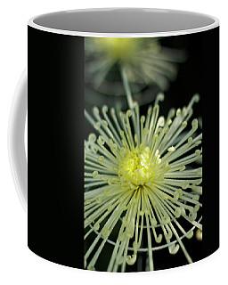 Spiral Chryanth Coffee Mug