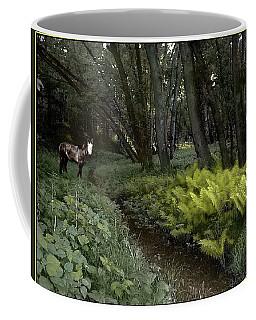 Spirit Pony On Langdon Wood Fernpath Coffee Mug