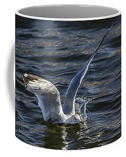 Coffee Mug featuring the photograph Splash Landing by Ray Congrove