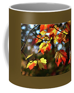 Splash Of Color Coffee Mug by Mikki Cucuzzo