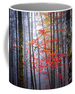 Coffee Mug featuring the photograph Splash Of Colour by Elena Elisseeva