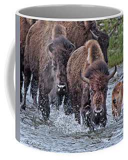 Splashing In The Lamar River Coffee Mug