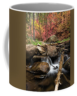 Splashing Into Autumn Coffee Mug