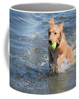 Splashing Little Red Duck Dog In The Ocean With A Ball Coffee Mug by DejaVu Designs