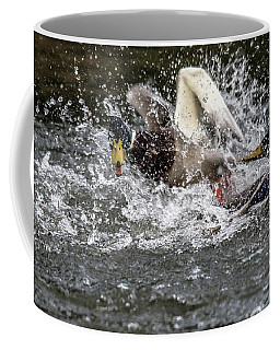 Splashing Mallards  Coffee Mug