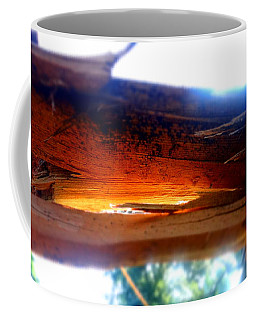 Splintered After The Storm Coffee Mug