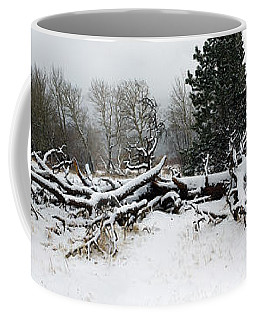 Coffee Mug featuring the photograph Split Personality - Panorama by Shane Bechler