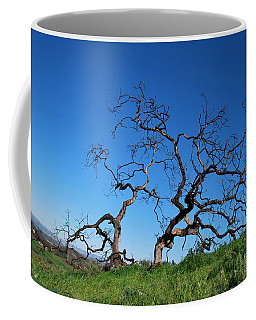 Split Single Tree On Hillside Coffee Mug