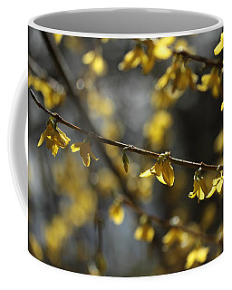 Coffee Mug featuring the photograph Spotlights  by Connie Handscomb