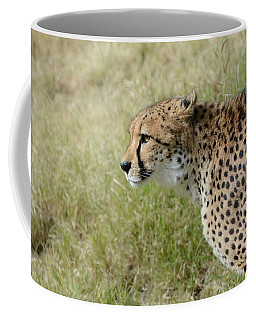 Coffee Mug featuring the photograph Spotted Beauty 3 by Fraida Gutovich